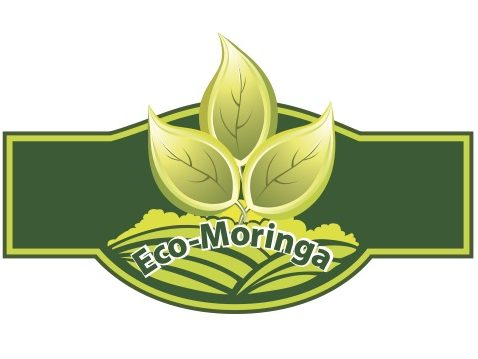 Eco-Moringa LTD